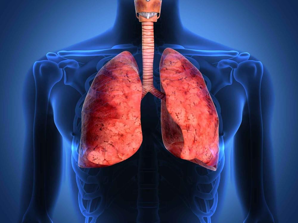 Akciğerleri Sigaradan Temizleme Yöntemleri