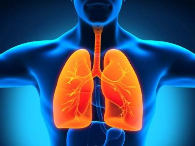 Akciğer Filizlenmesi Nedir? Neden Olur? Nasıl Geçer?