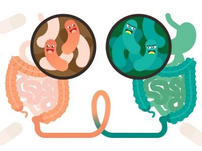 Bağırsak Parazitleri Nedir? Korunma Yolları Nelerdir?