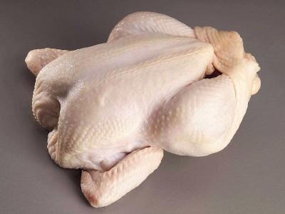 Bozuk Tavuk Nasıl Anlaşılır? Nasıl Kokar? Zehirler mi?