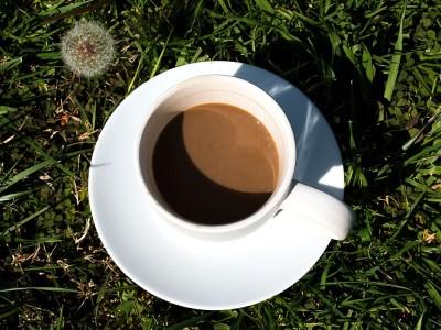 Hindiba Kahvesi Zayıflatır mı? Hindiba Kahvesi Kilo Verdirir mi?