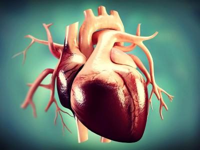 Kalp Spazmı Nedir? Neden Olur? Belirtileri Nelerdir? Öldürür mü?