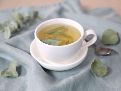 Okaliptus Çayı Ne İşe Yarar? Nasıl Yapılır? Zararları Var mı?