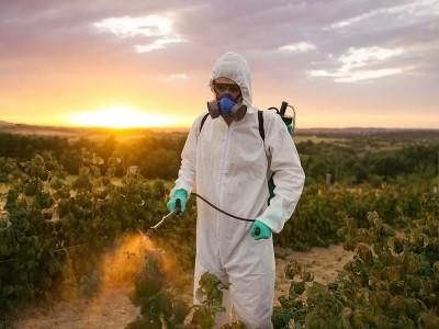 Pestisit Analizi Nedir, Ne Demek? Çeşitleri, Zararları ve Kullanımı Nedir?