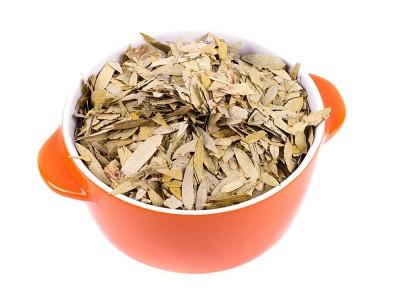 Sinameki Çayı Zayıflatır mı? Günde Kaç Bardak İçilir?